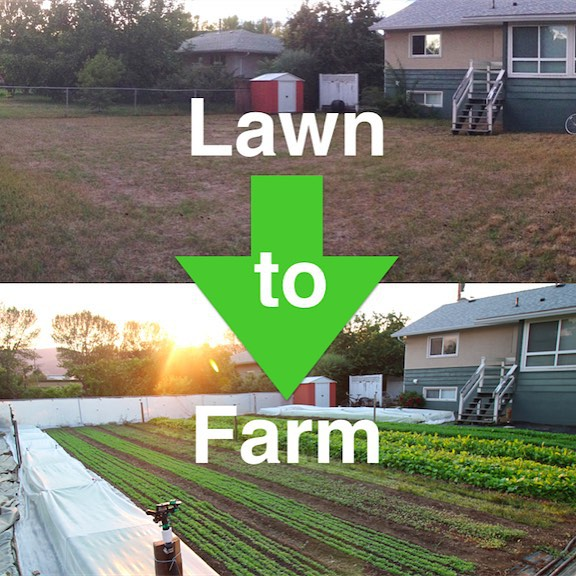 lawn to farm