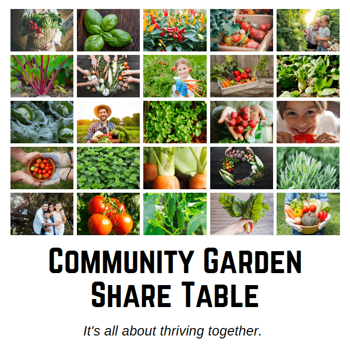 Community Garden Share Table at Capital Chiropractic